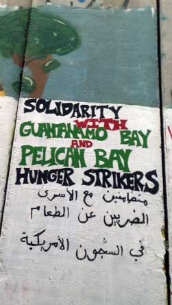 Photo of painted messagse of solidarity with Guantanamo and Pelican Bay hunger strikers on the apartheid wall