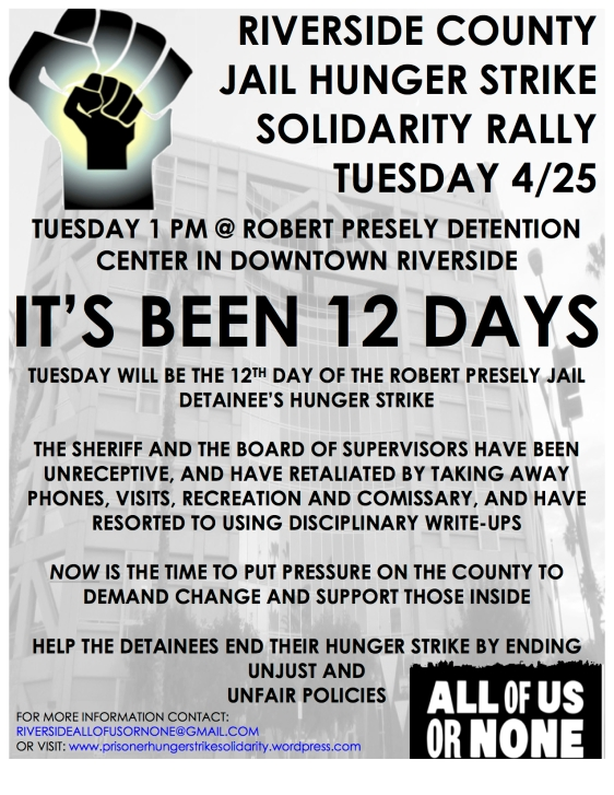 Hungerstrike Action Poster -- 12TH DAY
